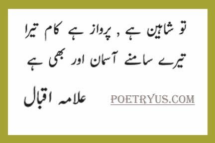 shaheen iqbal poetry