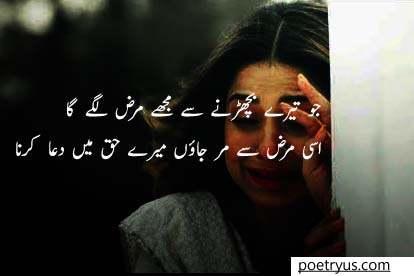 marz barhta gaya poetry