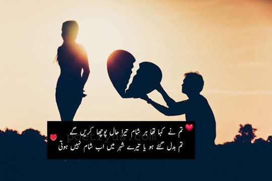 sham quotes in urdu