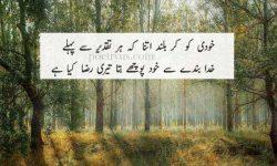 best teacher poetry in urdu
