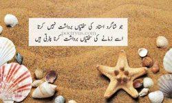 teachers day quotes in urdu language