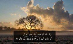 urdu poetry on teachers respect