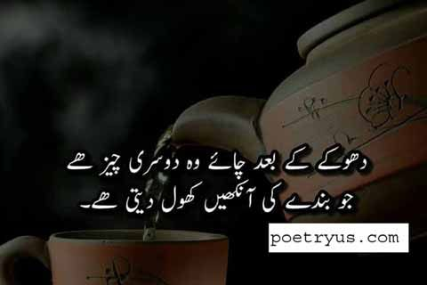 chai lover quotes in english