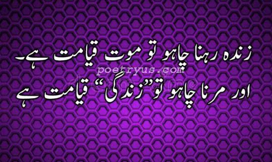 aurat ki zindagi quotes in urdu