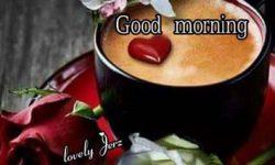 good morning thank god its friday images