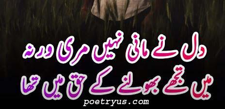 beautiful dosti shayari in urdu