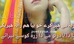 pashto poetry love 2 line