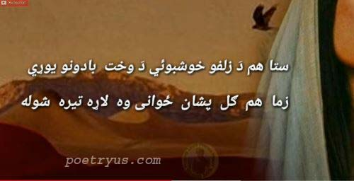 pashto inqilabi poetry sms
