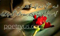 aashiqui quotes in urdu