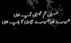 alfaaz shayari in urdu